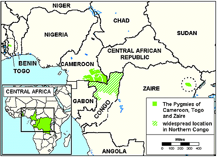 Pygmy, Bayaka, Binga in Central African Republic