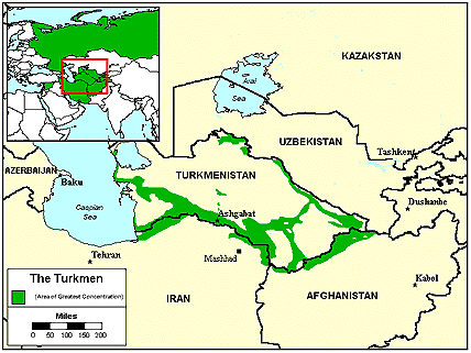 Turkmen in India