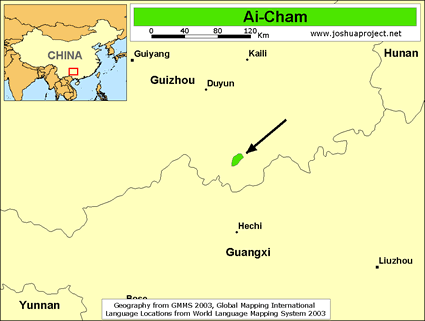 Ai-Cham in China