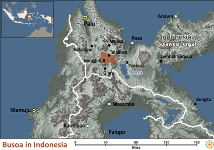 Map of Busoa in Indonesia