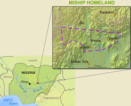 Map of Chip in Nigeria