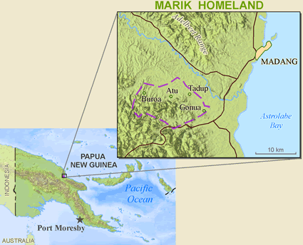 Dami, Ham in Papua New Guinea