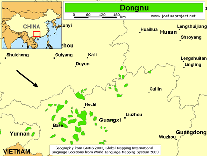 Dongnu in China