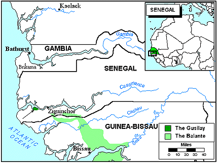 Jola-Gusilay in Senegal