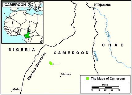 Mada in Cameroon