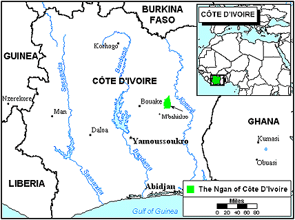 Ngan, Nguin in Côte d'Ivoire