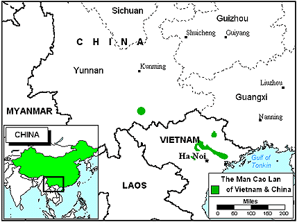 Cao Lan in China