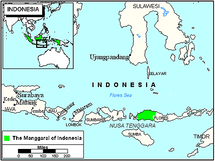 Manggarai in Indonesia