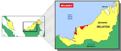 Melanau in Brunei