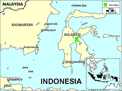 Mori Atas, West in Indonesia