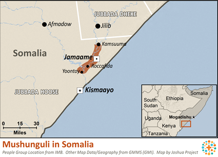 Mushunguli in Somalia