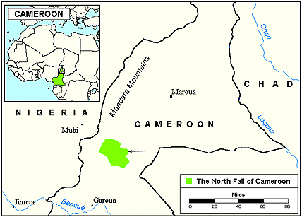 Fali, North in Cameroon