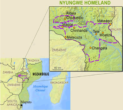 Nyungwe in Mozambique