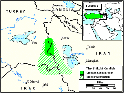 Shikaki in Turkey