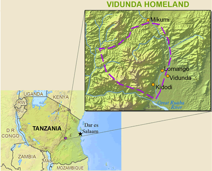 Map of Vidunda in Tanzania