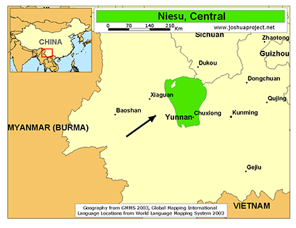 Niesu, Central in China