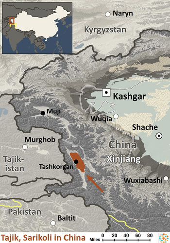 Tajik, Sarikoli in China
