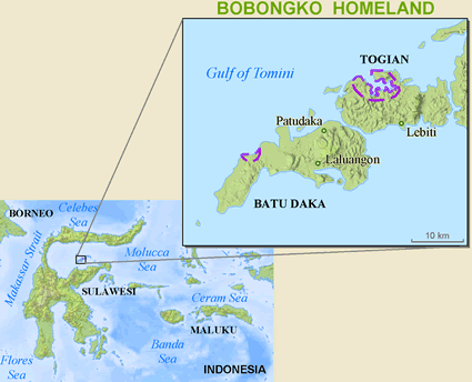 Map of Bobongko in Indonesia
