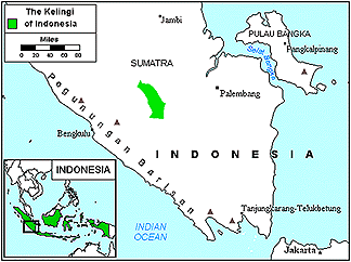 Sindang Kelingi of Indonesia map